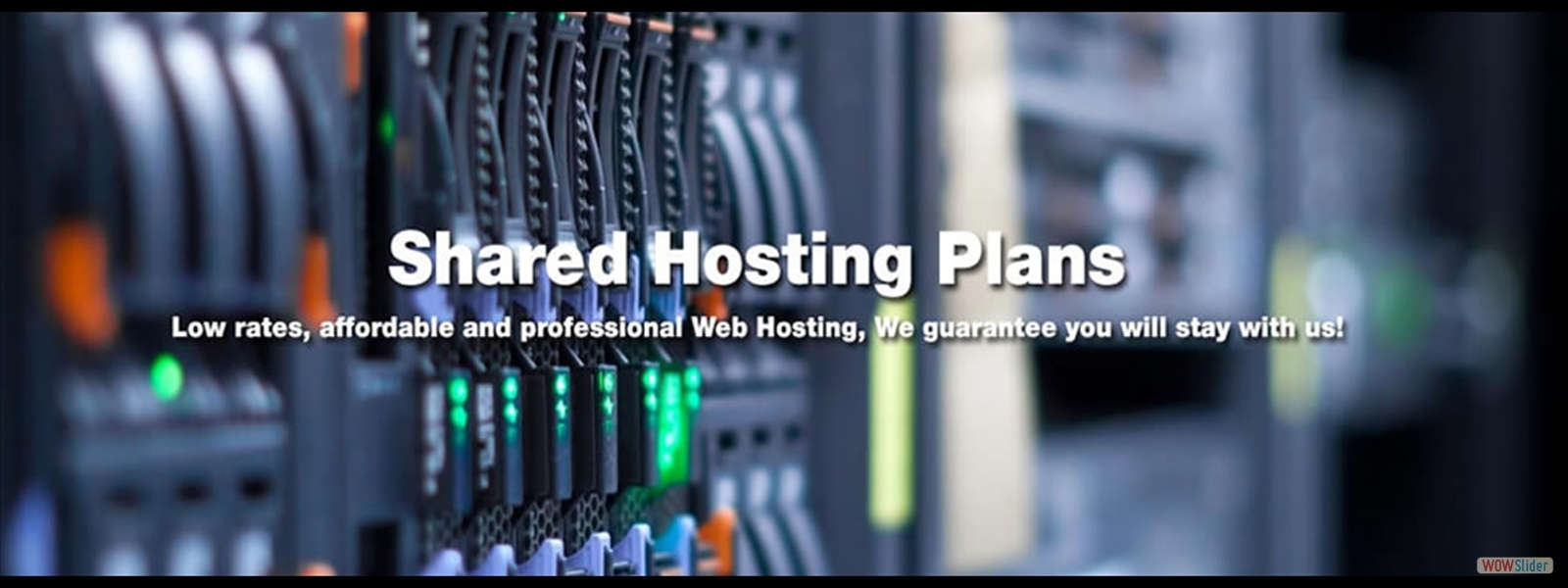 TheBuston Shared Hosting